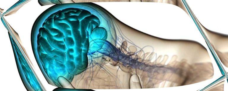 Характеристика заболевания бульбарной дизартрии